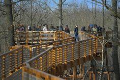 Átadták Karcag új turisztikai attrakcióját, amely a helyi parkerdő Erzsébet-ligeti részén mintegy 6 Hungary, Traveling, Nature, Decor, Travel Advice, Viajes, Naturaleza, Decoration, Trips