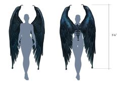 Images from the 2014 film Maleficent. Wings Drawing, Drawing Base, Figure Drawing, Maleficent Wings, Film Maleficent, Maleficent Drawing, Maleficent Cosplay, Character Inspiration, Character Art