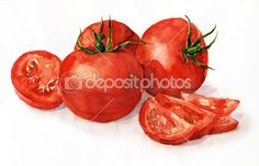 Illustration about Watercolor painting, still life, tomatoes on a light background. Illustration of tomatoes, food, ingredient - 20075352 Watercolor Food, Watercolor Print, Watercolor Paintings, Watercolor Background, Watercolours, Fruit Illustration, Food Illustrations, Tomato Drawing, Garden Fence Art