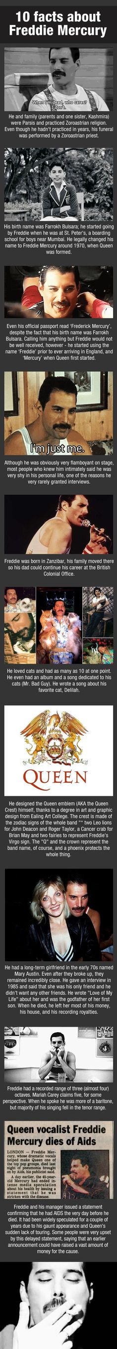 10 facts about Freddie Mercury  // funny pictures - funny photos - funny images - funny pics - funny quotes - #lol #humor #funnypictures
