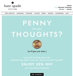 Google Image Result for http://blog.mainstreethost.com/wp-content/uploads/2012/11/Kate-Spade-Survey-Email.png