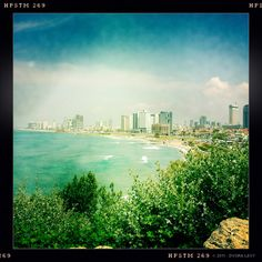 Oh Tel Aviv, this photo makes you look much prettier than you are.  I will admit that you have a killer coastline.