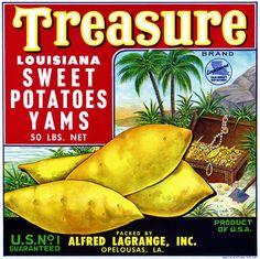 Treasure Louisiana Yams