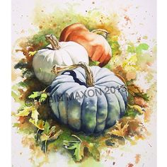 Three Pumpkins: watercolor painting by Robin Maxon fall Watercolor Fruit, Watercolour Painting, Watercolor Flowers, Painting Art, Watercolours, Autumn Painting, Autumn Art, Pumpkin Painting, Pumpkin Art
