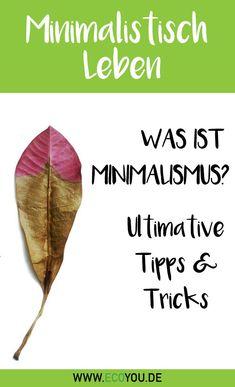 Infografik flyer teile lebensmittel anstatt sie for Minimalistisch leben blog