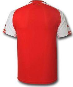 Puma dennis bergkamp arsenal authentic players match home jersey 2014 15 b1b8e0a34
