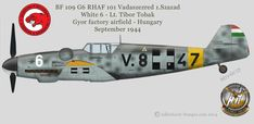 Luftwaffe, Defence Force, Ww2 Planes, Sanya, Military Aircraft, World War Two, Hungary, Wwii, Air Force