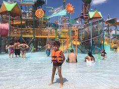 Felipe, o pequeno viajante: Aquatica, o parque aquático do Sea World em Orlando, pela Alessandra Munhoz e família