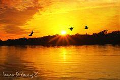 Ocean Art Print Ocean Sunset Florida Photography by FineArtography