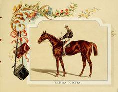 Album of celebrated American and English running horses. New York :Kinney Bros.,[1888?] (Free Printable!)
