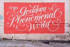 Goddam Phenomenal World on Behance