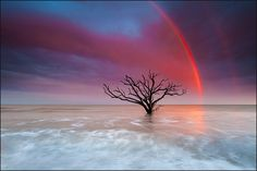 Botany Bay, Edisto Island, SC- by Igor Laptev, via 500px