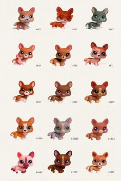 Nicole`s LPS blog - Littlest Pet Shop: Pets:Corgi
