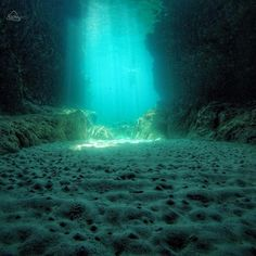 Daniele Fais shares an amazing underwater view from the sandy seabed at Comino's Blue Lagoon