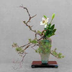 Ecole d'ikebana Ohara La Rochelle/Sud-Ouest - bunjin - - next picture Arrangements Ikebana, Ikebana Flower Arrangement, Modern Flower Arrangements, Oriental Flowers, Exotic Flowers, Purple Flowers, Art Floral Japonais, Art Japonais, Bonsai