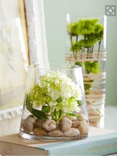 Budget Flower Arrangements Love the idea of anchoring a single lush blossom (hydrangeas, anyone?) amidst stones in a glass cylinder vase.Love the idea of anchoring a single lush blossom (hydrangeas, anyone?) amidst stones in a glass cylinder vase. Fresh Flowers, Beautiful Flowers, Diy Flowers, Diy Flower Vases, Orchid Flowers, Fake Flowers, Spring Flowers, Arrangements Ikebana, Budget Flowers