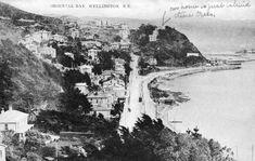 Wellington City, Garden Gazebo, Houses Of Parliament, British Isles, Old Photos, New Zealand, Old Things, Boat, Island