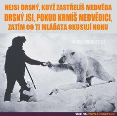 Nejsi drsný, když zastřelíš medvěda…