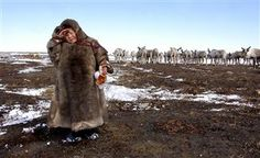 Indigenous people of Yamal will receive social assistance for purchase of housing - Politics: Arctic-Info Arctic, Russia, People, Politics, News, People Illustration, Folk