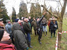 HERNE – Grote belangstelling voor het snoeien van fruitbomen