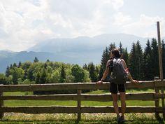 Der Westwanderweg am Attersee: von Nussdorf bis Stockwinkl - smilesfromabroad Seen, Salzburg, Mountains, Nature, Travel, Holiday Destinations, Naturaleza, Viajes, Trips