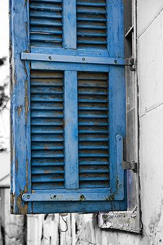 The Blue Shutter . Falasteen