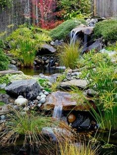 18 Essential Elements of Authentic Japanese Garden Design The sound of moving water from waterfalls adds to the soothing nature of Japanese gardens. This stream is punctuated by two waterfalls and ponds. Papyrus, ornamental grasses, and groundcovers bring Backyard Water Feature, Ponds Backyard, Backyard Waterfalls, Ponds With Waterfalls, Backyard Stream, Garden Stream, Backyard Ideas, Japanese Garden Design, Japanese Gardens