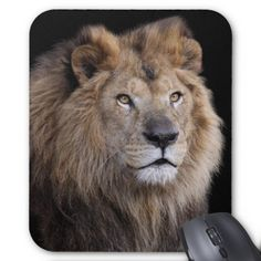 Mouse pad of face of lion, No.08