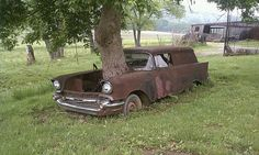 This tree had to grow through the front of the car... this is awesome!