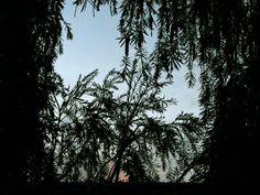 A window on the sky by Alessandra Ballerini  on 500px