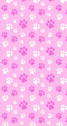 Puppy kitten pets paws pink