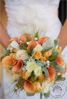 Fall inspired bouquet recipe. Peach and green tones come together in this elegant bouquet that would accent any bride beautifully.    Recipe:  white ranunculus (10 stems)  apricot mini callas (10 stems)  peach girlie frolies spray roses (10 stems)  ivory vendela roses (5 stems)  dusty miller (1 bundle)  green scabiosa (12-15)  a dash of white pods  and…a sprinkle of wheat grass