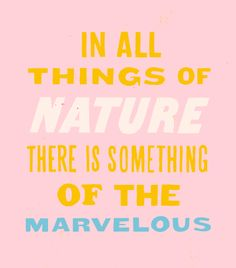 In all things of nature there is something of the marvelous. hand-drawn love | designlovefest