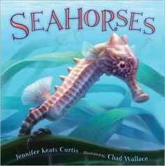 Seahorses by Jennifer Keats Curtis is a fascinating look into the world of these sea creatures. The author discusses the habits of these amazing little animals including camoflouge capabilities and mating rituals. The illustrations of the coral reef are fabulous.  Perfect for grades 1-3.