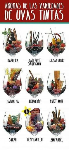 The expression in vino veritas comes from the Romans. In Vino Veritas, Wine Facts, Wine Vineyards, Wine Education, Wine Guide, Wine Parties, Italian Wine, Wine And Beer, Wine And Spirits