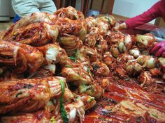 the winter bloodbath that is kimchi making - made in loads of dustbins in our neighbour's garage (김장)