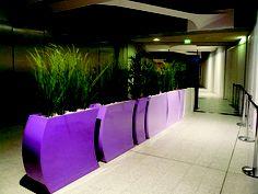 Purple gradient of colour using Curvy Bridgets.