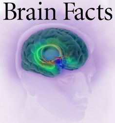 Interesting!  40 facts about sleep you probaly didn't know & other trivia brain facts