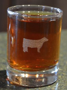 Shot Glass Show Cattle Show Steer on a shot by HayesMartensGallery