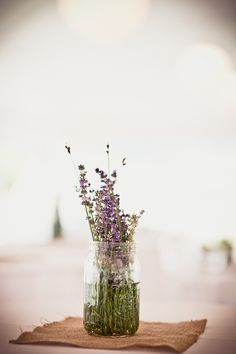 Weddings fall into many categories, but I think this gorgeous wedding from Katie Hall Photography is in a league all of its own. Because not only is it hosted at the lovely Cape Cod Lavender Farm . Little Flowers, Beautiful Flowers, Bouquet, Farm Wedding, Wedding Rustic, Luxury Wedding, Boho Wedding, Wedding Dress, Planting Flowers