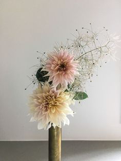 Dahlia 'Cafe au Lait', Cotinus coggygria 'Royal Purple'- How to add Dahlias to Your Garden, Thinking Outside the Boxwood