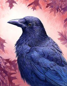 "Crows Ravens: "" by Alanpaints. Escorpion Tattoo, Raven Tattoo, Tattoos, Crow Art, Bird Art, Crow Spirit Animal, Raven Mask, Crow Painting, Crows Ravens"