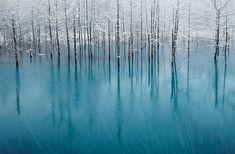 Grandes fotos del invierno