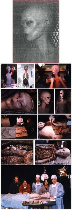 """""""THE ABOVE IMAGE IS A PHOTO OF J-ROD THE INSECTOID WHO IS IN SOME KIND OF SPHERE AT AREA 51……"""" #Area51"""
