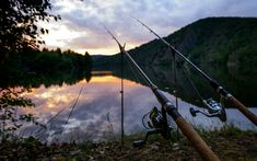 Download wallpapers fishing concepts, fishing rods, river, morning, Czech Republic, Vltava River