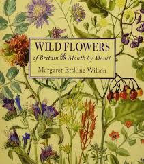 「flowers」の検索結果 - Yahoo!検索 Into The Wild, Fishing Books, Flower Names, Holiday Candy, Botanical Art, Book Publishing, Natural History, Art School, Textile Design