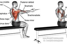 Seated one-arm cable row exercise