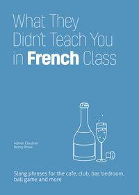 What They Didn't Teach You in French Class: Slang Phrases for the Cafe, Club, Bar, Bedroom, Game and More