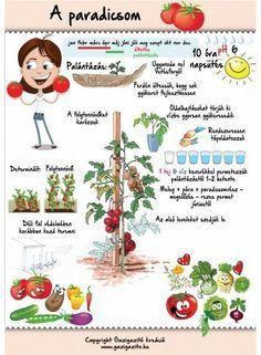garden life / front yard landscaping / gardening hacks / deck ideas / gardeners … – - All About Gardens Bio Garden, Herb Garden, Garden Planters, Back Garden Landscaping, Front Porch Garden, Garden Tool Organization, Garden Tool Storage, Garden Tool Bag, Garden Tools