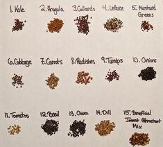 flower-seed-identification-chart | Gardening | Flower ...